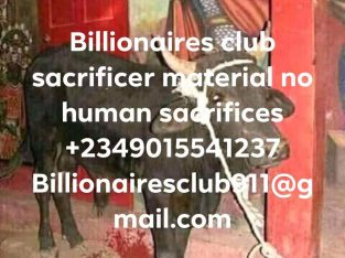 i want to join occult for money ritual 09015541237